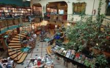 Mexico: voici la seule librairie au monde où vous pourrez lire sous des arbres!